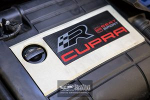 SEAT LEON CUPRA 1P JL AUDIO AUTOFUN EVOTEC PIONEER CRUNCH